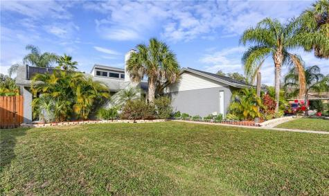 908 Mcintosh Circle Brandon FL 33510
