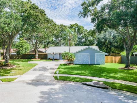 3387 Atwood Court Clearwater FL 33761