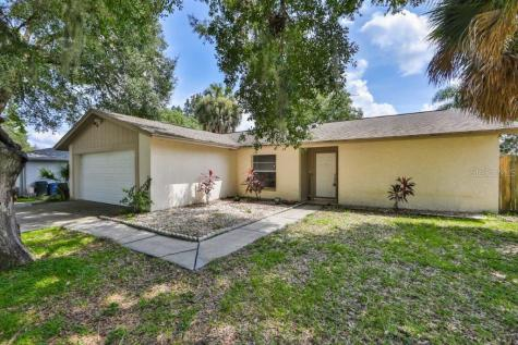 2703 Manor Hill Drive Brandon FL 33511