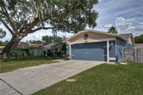 3007 Rosebud Lane Brandon FL 33511