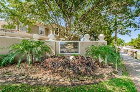 3365 Covered Bridge Drive W Dunedin FL 34698