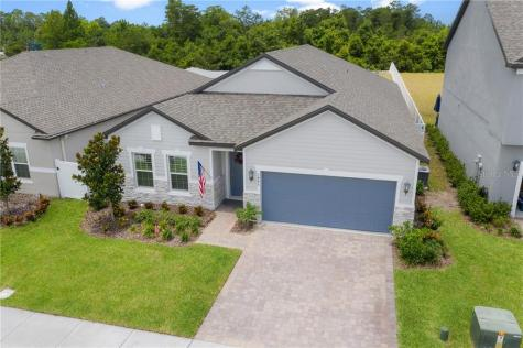 3446 Feathergrass Ct Harmony FL 34773